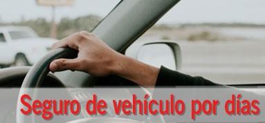 Seguro de vehículos por días